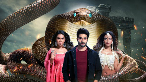 Naagin 4 Is NOT Going Off Air   Nia Sharma To Be Seen In New Avatar!