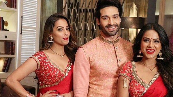 Here's How Naagin 4 Will End | Not Asim Riaz, But Paras Chhabra Approached For Naagin 5!