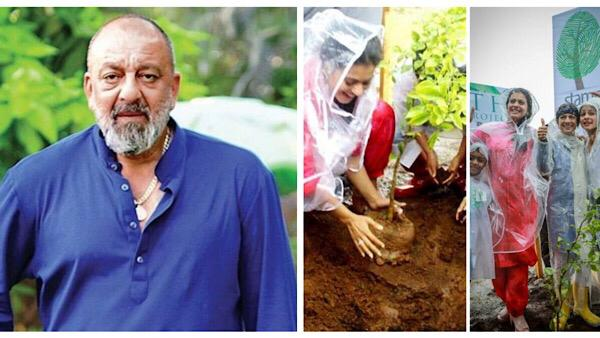 World Environment Day 2020 | Bollywood Stars On Celebrating Mother Earth In Pandemic Times