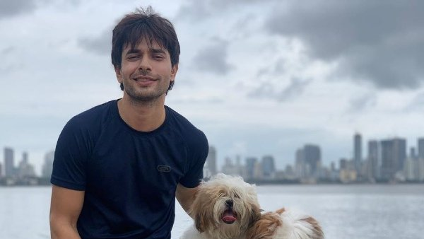 Dil Toh Happy Hai Ji Actor Ansh Bagri Tests COVID-19 Positive; Says He Is In Isolation