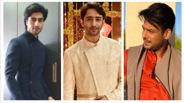 Best TV Actors 2020: From Harshad Chopda To Shaheer Sheikh, TV Stars Who Topped This Year's List!